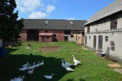 Bauernhof in Ziesar  - Glienecke