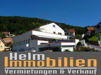 Gastronomie in Heidelberg  - Ziegelhausen