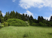 Wohngrundstück in Lind  - Plittersdorf