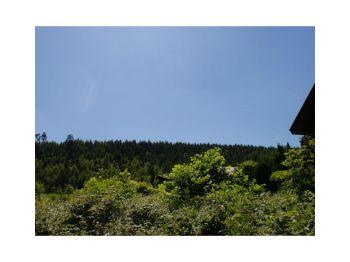 Wohngrundstück in Horn-Bad Meinberg  - Holzhausen-Externsteine