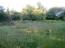 Wohngrundstück in Goch  - Kessel
