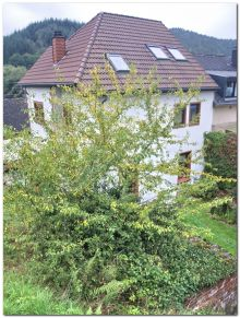 Einfamilienhaus in Trier  - Ehrang