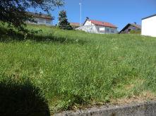 Wohngrundstück in Obernheim
