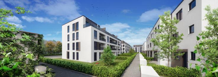 Penthouse in Hochheim  - Hochheim