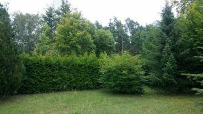 Wohngrundstück in Wandlitz  - Wandlitz