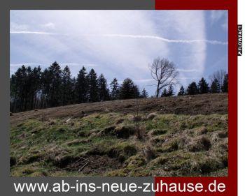 Wohngrundstück in Lemgo  - Lüerdissen