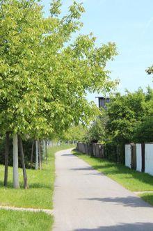 Etagenwohnung in Bruchsal  - Büchenau