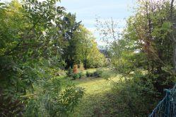 Wohngrundstück in Amorbach  - Amorbach