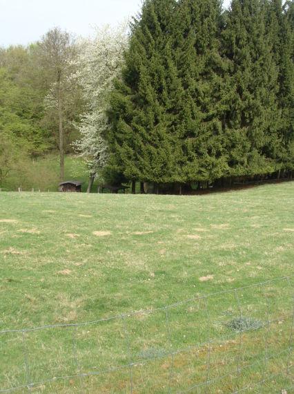 Grundstück im Mischgebiet an gut befahrener Straße