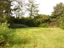 Wohngrundstück in Wesel  - Obrighoven