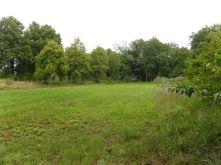Wohngrundstück in Neu Darchau  - Katemin