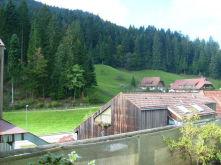 Etagenwohnung in Bad Rippoldsau-Schapbach  - Bad Rippoldsau