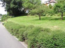 Wohngrundstück in Namborn  - Baltersweiler