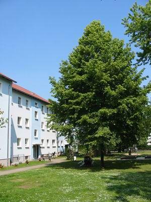 Etagenwohnung in Kamen  - Methler