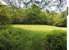 Sonstiges Grundstück in Karlsruhe  - Durlach