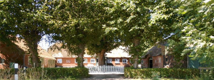 Bauernhaus in Dollerup  - Dollerup