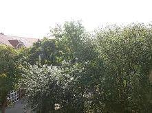 Wohngrundstück in Oldenburg  - Bürgerfelde