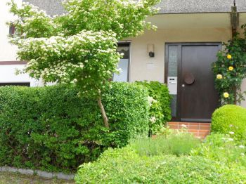 Doppelhaushälfte in Adelberg