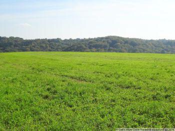 Land- und Forstwirtschaft in Lohmar  - Agger