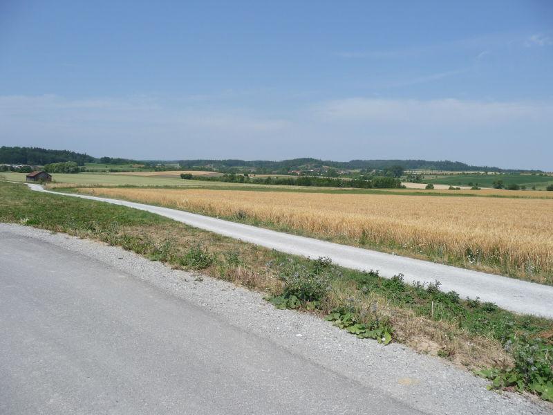 Sch�ner Bauplatz Neubaugebiet Gaukler V nahe Ortsrand - Grundst�ck mieten - Bild 1