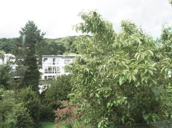 Etagenwohnung in Bonn  - Kessenich