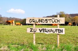 Wohngrundstück in Ritzerau
