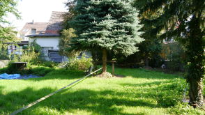 Besondere Immobilie in Weingarten