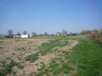 Wohngrundstück in Großschirma  - Siebenlehn
