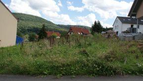Wohngrundstück in Miltenberg  - Breitendiel