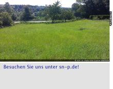 Sonstiges Grundstück in Schlangen  - Kohlstädt
