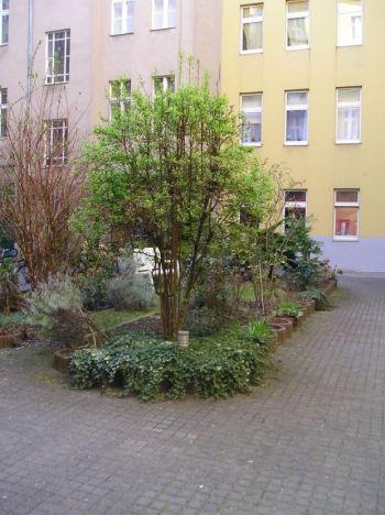 Apartment in Berlin  - Charlottenburg