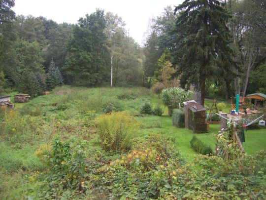 Gartengrundst�ck Wesenitz verpachten - Grundst�ck mieten - Bild 1