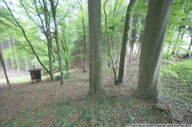 Land- und Forstwirtschaft in Lohmar  - Lohmar