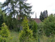 Einfamilienhaus in Taben-Rodt