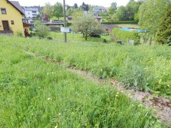 Wohngrundstück in Wadern  - Altland