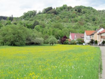 Doppelhaushälfte in Urbach
