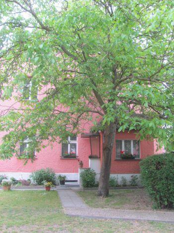 Etagenwohnung in Mühlenbeck