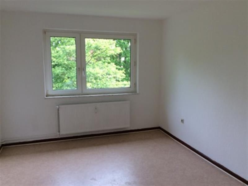 3 Zimmer Wohnung B Schein - Wohnung mieten - Bild 1
