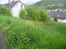 Wohngrundstück in Siegen  - Eiserfeld