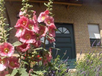 Doppelhaushälfte in Lohmar  - Hoven
