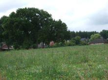 Wohngrundstück in Thomasburg  - Bavendorf