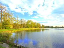 Teich- und Fischwirtschaft in Brandenburg  - Neustadt