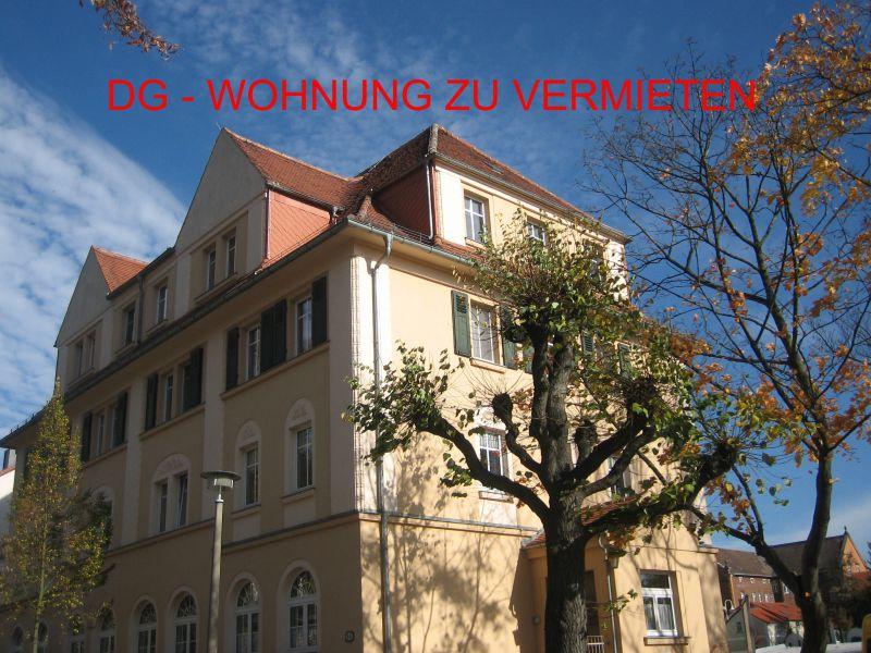 DG Wohnung - Wohnung mieten - Bild 1