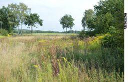 Sonstiges Grundstück in Thomasburg  - Thomasburg