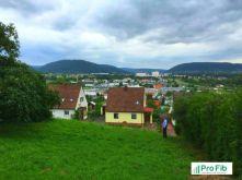 Wohngrundstück in Miltenberg  - Miltenberg