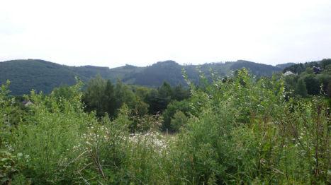 Wohngrundstück in Nachrodt-Wiblingwerde  - Obstfelder Stall-Schmalsgotte