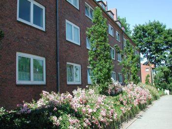Erdgeschosswohnung in Kiel  - Gaarden-Ost