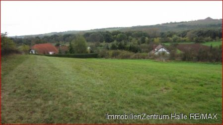 Wohngrundstück in Wettin-Löbejün  - Wettin
