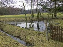 Freizeitgrundstück in Apelern  - Apelern