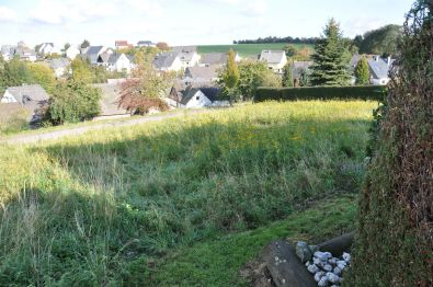 Wohngrundstück in Morbach  - Hoxel